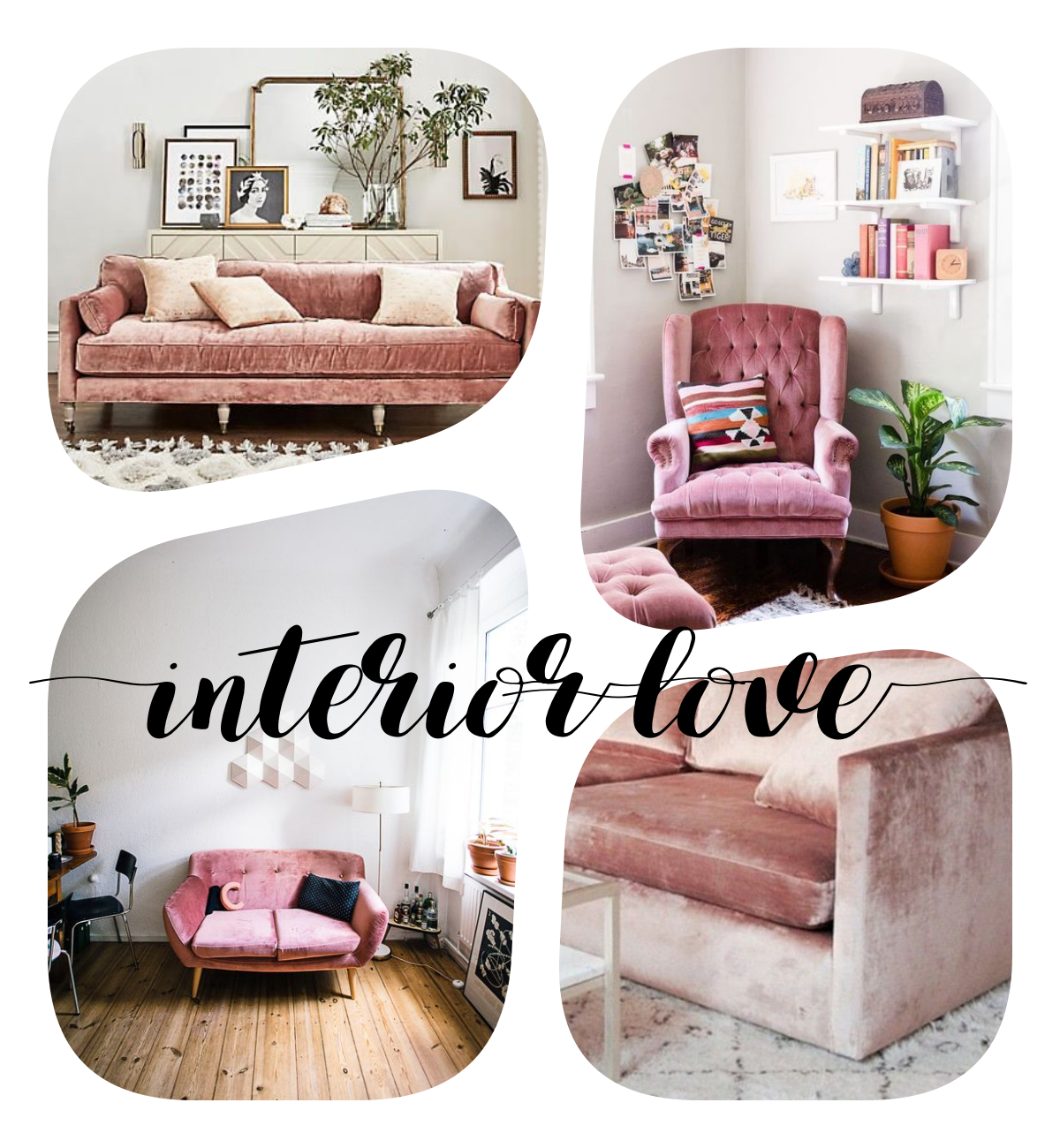 Interior inspo rosa samt for Samt sessel rosa